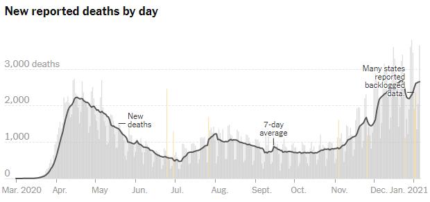 06 jan usa daily deaths
